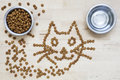 Dry food for cats two bowls wooden surface cat shape one with a with water some crunchies are on out of the bowl and forms a Royalty Free Stock Images