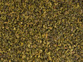 Dry green oolong tea leaves texture background Royalty Free Stock Photography