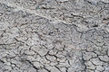 Dry ground with cracks very soil Royalty Free Stock Photos