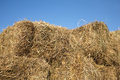 Dry hay against clear cloudless blue sky closeup lot of Stock Photography