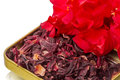 Dry hibiscus tea and flower red on white Royalty Free Stock Image