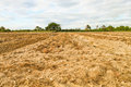 Dry land blank preparation for farming Royalty Free Stock Images