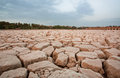 Dry land on the place of dried river Royalty Free Stock Photo