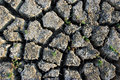 Dry Land Texture Royalty Free Stock Photos