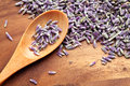 Dry lavenders spoon of on wood table Stock Photos