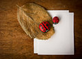 Dry leaf ladybird and paper cobblestone on wooden background Royalty Free Stock Images