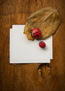 Dry leaf ladybird and paper cobblestone on wooden background Stock Photo
