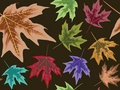 Dry leaves seamless pattern Royalty Free Stock Photography