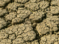 Dry mud cracked from drought field of caused by prolonged Royalty Free Stock Images