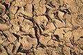 Dry mud or cracked earth