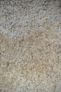 Dry mud earth texture Royalty Free Stock Photo