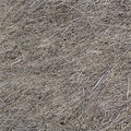 Dry old grass texture seamless background Royalty Free Stock Photo