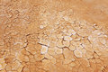 Dry, parched earth Royalty Free Stock Photos