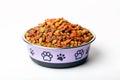 dry pet cat dog food in granules in cute bowl Royalty Free Stock Photo
