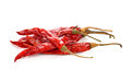 Dry red pepper Royalty Free Stock Photo