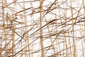 Dry reeds pattern abstract seasonal autumn nature background plant reed bush closeup forming a geometric with silhouettes and Stock Photo