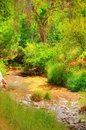 Dry River Stock Photography