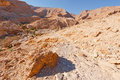 Dry riverbed in the negev desert Royalty Free Stock Photo