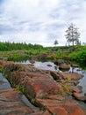 Dry riverbed of vyg river in zalavruga Stock Photos