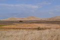 Dry rolling hills of California Royalty Free Stock Photo