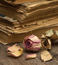 Dry rose and old books on a wooden background Royalty Free Stock Photography