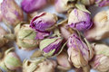 Dry Rose Tea Leaf 01 Royalty Free Stock Photo
