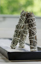 Dry sage sticks for smudging Stock Images