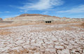 Dry salty soil pattern in San Pedro de Atacama desert Royalty Free Stock Photo