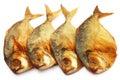 Dry scaled sardine fish over white background Stock Photography