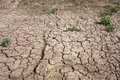 Dry soil Stock Photography