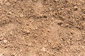 Dry soil background Royalty Free Stock Photo