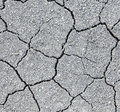 Dry Soil Cracks