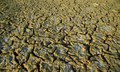 Dry soil during drought Royalty Free Stock Photos