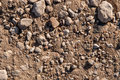 Dry soil and stones of an agricultural field Royalty Free Stock Photography