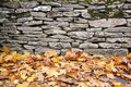 Dry stone wall autumn leaves background Royalty Free Stock Photo