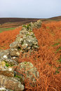 Dry stone wall dartmoor Royalty Free Stock Photos