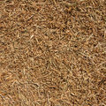 Dry straw background Royalty Free Stock Photos