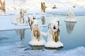 Dry tree stumps covered with snow on frozen pond Royalty Free Stock Photo