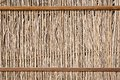 Dry wooden fence Stock Image