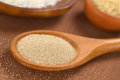 Dry yeast baking ingredients active on wooden spoon with oregano and flour in the back selective focus focus in the middle of the Stock Image