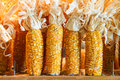 Dry yellow corn on the wooden shelf Royalty Free Stock Photos