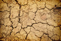Dry yellow soil desert texture background Royalty Free Stock Photography