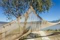 Drying fishing net Royalty Free Stock Photo