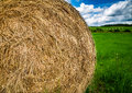 Drying hay roll Royalty Free Stock Photo