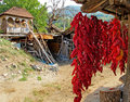 Drying peppers in an old traditional manner outdoor pepper are strung ingo wreaths the background there the courtyard there Stock Photography