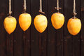 Drying persimmon by the sun close up of fruits outdoors  Royalty Free Stock Photo