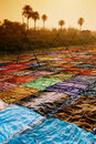 Drying sari, India Royalty Free Stock Photo