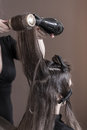 Drying woman's hair Royalty Free Stock Photo