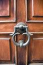 Drzwiowy elegancki knocker Obraz Stock