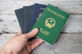 Dual citizenship concept vietnamese and canadian Stock Images